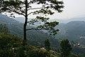 A view from Nagarkot panoramic hiking trail, 7 May 2019 6.jpg