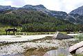 A walk in Pirin .jpg