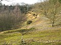 Abandoned sand pit in Hurst Wood - geograph.org.uk - 1141756.jpg