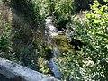 Afon Rhonwydd - geograph.org.uk - 268571.jpg
