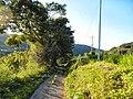 Akagimachi Tsukuda, Shibukawa, Gunma Prefecture 379-1103, Japan - panoramio (3).jpg