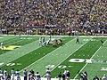 Akron vs. Michigan football 2013 04 (Michigan on offense).jpg