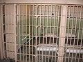 Alcatraz Cell 2005.JPG