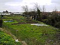 Allotments, Barnfield Close, Swindon (2) - geograph.org.uk - 366719.jpg