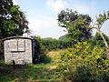 Alter Garten mit Beeren und Früchten im Hainich.JPG