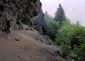 Great Smoky Mountains - The Alum Cave Bluffs.