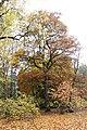 Americká zahrada - Chudenice - Okres Klatovy. (013).jpg
