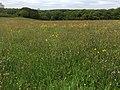 Amroth, UK - panoramio (1).jpg