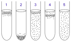 Thioglycolate broth - Aerobic and anaerobic bacteria can be identified by growing them in test tubes of thioglycolate broth:   1: Obligate aerobes need oxygen because they cannot ferment or respire anaerobically. They gather at the top of the tube where the oxygen concentration is highest.   2: Obligate anaerobes are poisoned by oxygen, so they gather at the bottom of the tube where the oxygen concentration is lowest.   3: Facultative anaerobes can grow with or without oxygen because they can metabolise energy aerobically or anaerobically. They gather mostly at the top because aerobic respiration generates more ATP than either fermentation or anaerobic respiration.   4: Microaerophiles need oxygen because they cannot ferment or respire anaerobically. However, they are poisoned by high concentrations of oxygen. They gather in the upper part of the test tube, but not the very top.   5: Aerotolerant organisms do not require oxygen as they metabolise energy anaerobically. Unlike obligate anaerobes, though, they are not poisoned by oxygen.  They can be found evenly spread throughout the test tube.