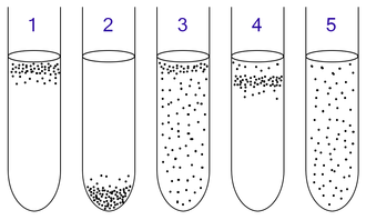 Microaerophile - Anaerobic bacteria can be identified by growing them in test tubes of thioglycollate broth:   1: Obligate aerobes need oxygen because they cannot ferment or respire anaerobically. They gather at the top of the tube where the oxygen concentration is highest.   2: Obligate anaerobes are poisoned by oxygen, so they gather at the bottom of the tube where the oxygen concentration is lowest.   3: Facultative anaerobes can grow with or without oxygen because they can metabolise energy aerobically or anaerobically. They gather mostly at the top because aerobic respiration generates more ATP than either fermentation or anaerobic respiration.   4: Microaerophiles need oxygen because they cannot ferment or respire anaerobically. However, they are poisoned by high concentrations of oxygen. They gather in the upper part of the test tube but not the very top.   5: Aerotolerant organisms do not require oxygen as they metabolise energy anaerobically. Unlike obligate anaerobes however, they are not poisoned by oxygen. They can be found evenly spread throughout the test tube.