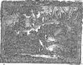 Anatomia Britannica- a system of anatomy Fleuron N001319-2.png