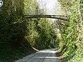 Andover - Iron Bridge - geograph.org.uk - 1813772.jpg