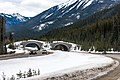 Animal crossing overpass in Banff National Park - Canada (26271251055).jpg