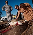 Animal sacrifice at Eid at Adha 16.jpg