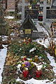 Anna Andreeff (grób).JPG