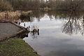 Annateich im Hermann-Löns-Park in Hannover IMG 6773.jpg