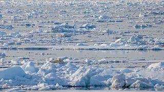 Ocean acidification in the Arctic Ocean