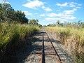 Arriga QLD 4880, Australia - panoramio (3).jpg