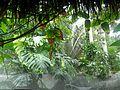 Artificial Jungle.jpg