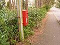 Ashley Heath, postbox № BH24 58, Lions Lane - geograph.org.uk - 1225739.jpg