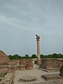 Ashoka pillar at kolhua.jpg