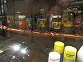 Audubon Insectarium Roach Infestation.jpg