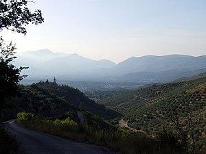Amaseno - The Auricola