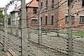 Auschwitz - Barracks - 28.JPG