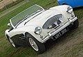 Austin-Healey 100 (1956) (35931836682).jpg