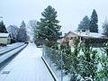 Avenue de la Foretaille en hiver à Pregny-Chambésy.jpg