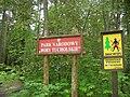Bachorze, Park Narodowy Bory Tucholskie.jpg