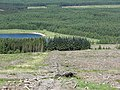 Backhill of Orchars - geograph.org.uk - 463545.jpg
