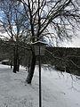 Badia Winter2.JPG