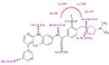 Bafetinib in binding site.PNG