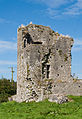 Ballybeg Priory St. Thomas Tower House 2012 09 08.jpg