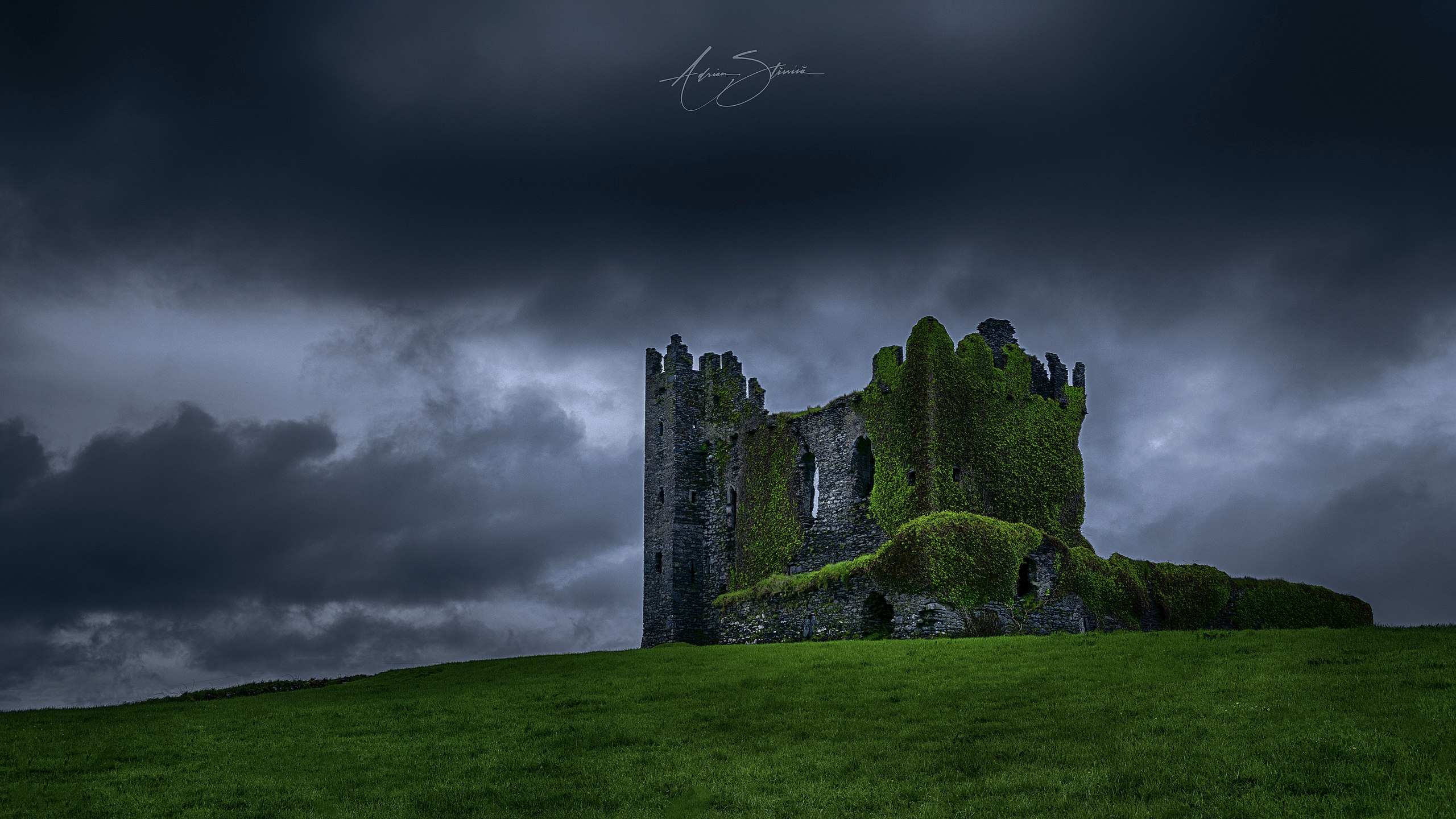 Professional photo of Ballycarbery Castle
