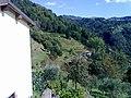 Barga, Province of Lucca, Italy - panoramio - jim walton (29).jpg
