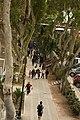 Barranco2.jpg
