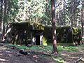 Bartošovice v Orlických horách, R-S 68 (rok 2010; 04).jpg
