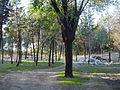 Basuras - en bici por el parque forestal de entrevías.jpg