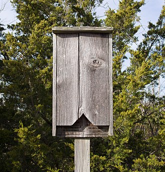 Nest box - A typical bat box affixed to a post