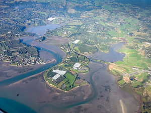 Bay of Plenty - Bay of Plenty farmlands, 2014