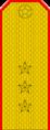 Belarus MIA—11 Senior Ensign rank insignia (Golden).png