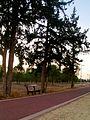 Bench Alsos Forest Nicosia Cyprus.jpg