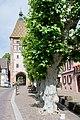Bergheim (48071568366).jpg