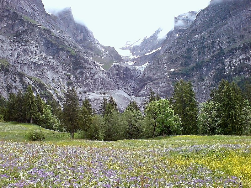 Most Beautiful Meadows In The World