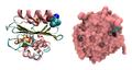 Beta-lactamase Citrobacter 3BFC.png