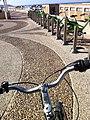 Biking in Tel Aviv (12149244975).jpg