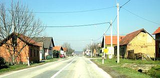 Bilice, Požega-Slavonia County Village in Slavonia, Croatia