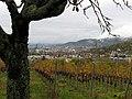 Blick vom Schlangenweg am Schönberg auf Freiburg.jpg